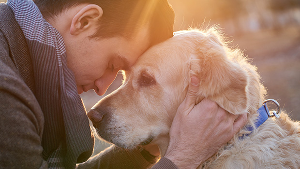 How Did Dogs Become Man's Best Friend?