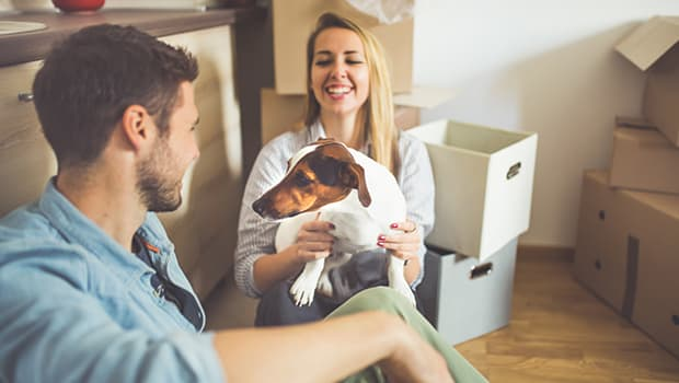Tips For Renting With Your Pet